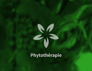 phytotherapie-1.jpg