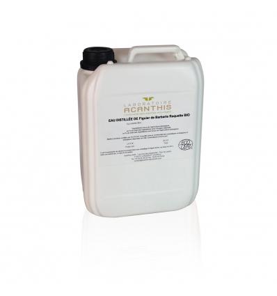 Eau distillée de Figuier de Barbarie BIOCOS - Opuntia ficus indica